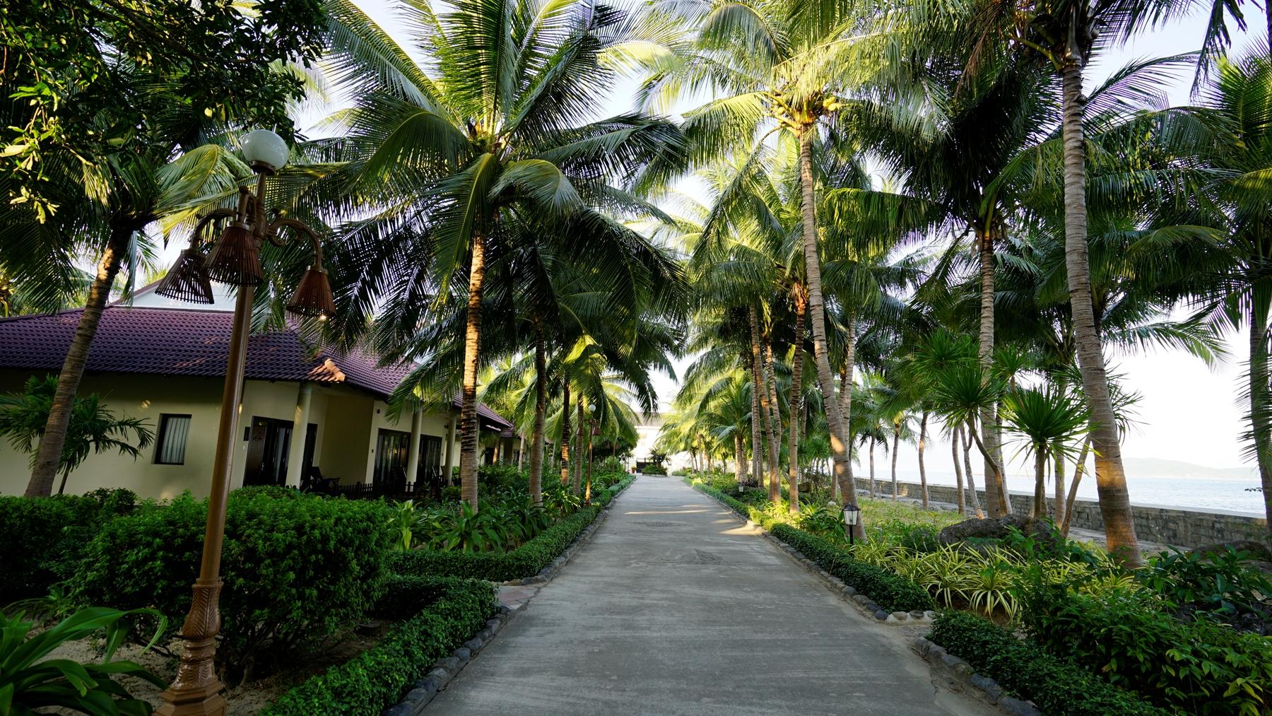 View trước phòng bungalow